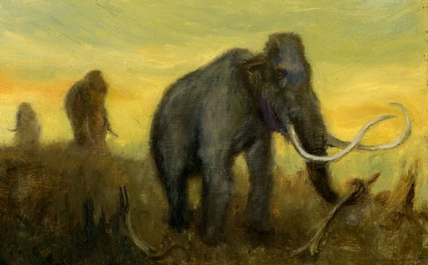 Columbian Mammoth