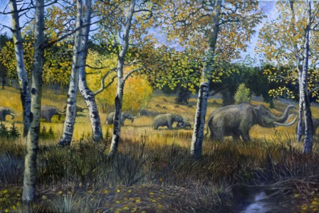 American Mastodons in Colorado